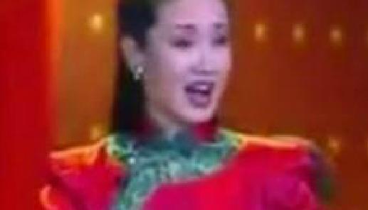 花鼓戏大全《亲亲黄梅戏》:毛泽东诗词沁园春雪雨的诗词